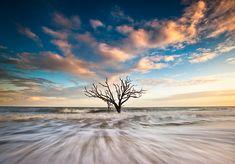 Alone - #Charleston South Carolina #landscape #photography by Dave Allen www.daveallenphotography.com