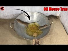 Oil Mouse Trap/How to make a Mouse Trap homemade with Oil/Saving a lot o. Oil Mouse Trap/How to make a Mouse Trap homemade with Oil/Saving a lot o. Oil Mouse Trap/How to make a Mouse Trap homemade with Oil/Saving a lot o. Mouse Traps That Work, Mouse Trap Diy, Homemade Mouse Traps, Mouse Trap Board Game, Mice Repellent, Rat Traps, Pet Mice, Christmas Bulbs, Oil