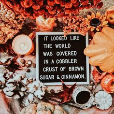Autumn. (And what I plan to say every time my husband complains about all the leaves dying.) : @allisongoesplaces #sarahaddisonallen
