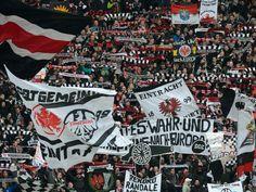 SGE: Zuschauerausschluss und Geldstrafen - sport.de