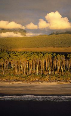 Bruce Bay, a continuum of wilderness from the mountains to the sea, South Westland, South Island, New Zealand