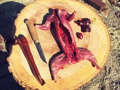 Shot a squirrel? Here's how to field dress it so you can eat it.