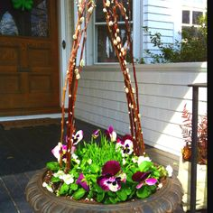 Easter basket container: tie pussywillow  with twine at top Add bulbs.pansy.grass..add colored eggs at Easter