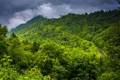 The Newfound Gap road is the perfect place to find great views!