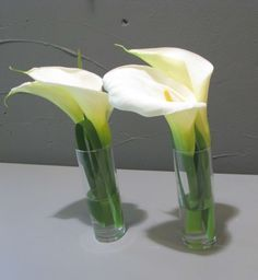 Calla Blüten in weiß Calla, Florists, Glass Vase, Lily, Business, Flowers, Home Decor, Calla Lilies, Round Round