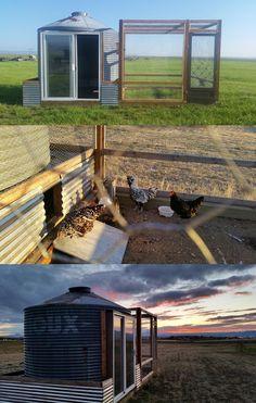 Chicken coop from a grain silo. Chicken Shack, Chicken Pen, Chicken Lady, Ranch Chicken, Cute Chicken Coops, Backyard Chicken Coops, Backyard Farming, Chickens Backyard, Home Focus