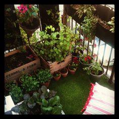 Mini Balcony Design: A Garden balcony! Love the idea. Fresh rosemary, anyone?