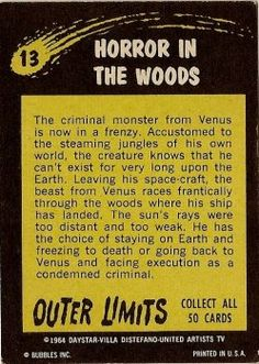 13 Horror In The Woods