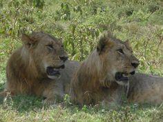 Lake Nakuru National Park; OTA - Overland Travel Adventures www.ota-responsibletravel.com