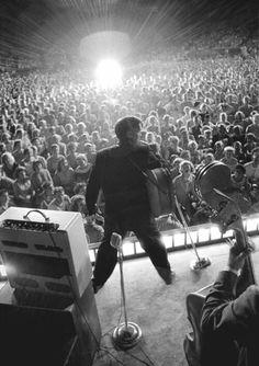 Espectacular!  Elvis en concierto.
