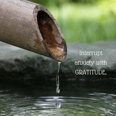 Randomocity: Gratitude