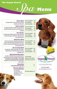 Dog Walking.Advertising Promotional Flyer sarah