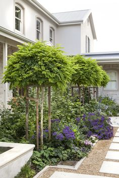 Designer: Tirzah Stubbs Style: Classical Garden Type: Private Garden Garden Types, Private Garden, South Africa, Gardens, Outdoor Structures, Plants, Design, Style, Swag