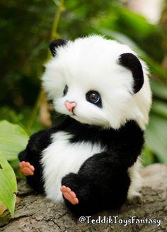 Panda Wallpapers, Cute Wallpapers, Cute Baby Dogs, Cute Babies, Cute Panda Wallpaper, Cute Teddy Bears, Cute Little Animals, Panda Bear, Plush