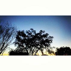 Araguaína em Tocantins Art, City, Art Background, Kunst, Performing Arts, Art Education Resources, Artworks