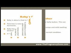 6 Months Pregnant - Week by Week Pregnancy 6 Months Pregnant, Pregnancy Videos, Baby Development, Learning, Studying, Teaching, Education