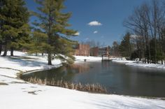 The pond and green trees in the winter on Skidmore College's campus in Saratoga Springs, NY
