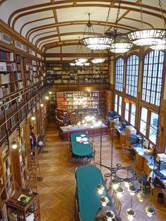 Bibliothèque - Institut de Paléontologie Humaine