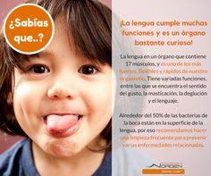 Clínicas Odontológicas  Norden Dental Care  www.norden.cl