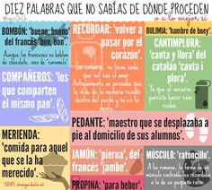 Spanish vocabulary and etimology of words If you find this info graphic useful, please share, like or pin it for your friends. Funny Spanish Phrases, Spanish Idioms, Ap Spanish, Spanish Vocabulary, Spanish Language Learning, Spanish Lessons, Teaching Spanish, Common Idioms, Spanish Expressions