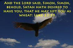 Luke 22:31