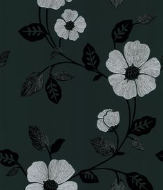 Poppy Modern Floral Wallpaper in Black by Brewster Home Fashions