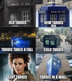 Soft Kitty meets the TARDIS