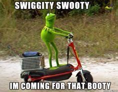I don't know why the Kermit memes always make me laugh so hard..