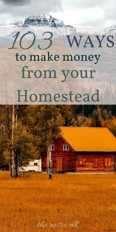 Finding opportunities to earn an income on your homestead can seem like a daunting task, but it doesn't have to be! Here are 103 ways to make money from your homestead, even a small one, from pocket change to a full time income! #homesteading