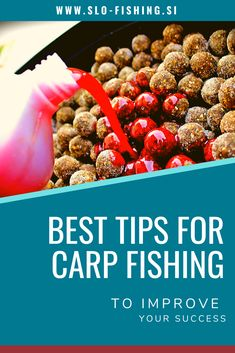 Tips for carp fishing - learn how to be the best - The setup for carp fishing is different from any other standard fishing setup. It is therefore advi - Homemade Catfish Bait, Best Catfish Bait, Best Carp Bait, Diy Fishing Bait, Carp Fishing Rods, Fishing Rigs, Fly Fishing, Fishing Lakes, Fishing Knots