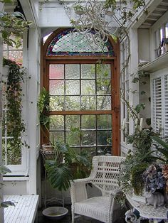 Inside Roozentangle's   tiny glass house  A diminutive conservatory, complete with awesome arched window.