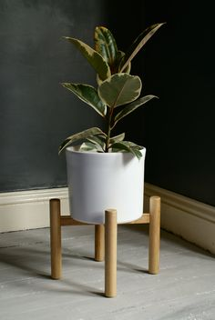 Simple, Modern, Natural Ash Plant Stand