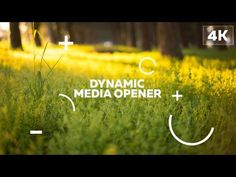 Dynamic Media Opener | After Effects template