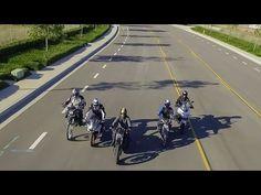 Best New Bikes For Under $10K: IRON 883 vs VERSYS 650 vs RC390 vs DRZ-400S vs FZ-07 | On Two Wheels - YouTube