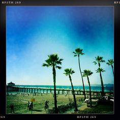 Manhattan Beach, CA  This is my favorite local spot because:  Best beach in LA, beautiful sunsets…
