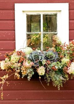 If you want to make the most out of your window box, you need to design it properly. Need ideas to style your window box? Check out our 17 list window box ideas Fall Window Boxes, Window Planter Boxes, Planter Ideas, Window Box Flowers, Fall Window Displays, Christmas Window Boxes, Fall Flowers, Dried Flowers, Fall Flower Boxes