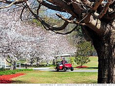 Welcome To Peachtree City Georgia - The city where golf carts are the norm. With over 90 miles of trails. ((And we already have a golf cart! Best Places To Live, Best Places To Travel, Peachtree City Georgia, City Golf, Honeymoon Spots, States In America, Tybee Island, Travel Pictures, Travel Pics