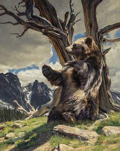 The Art of Dustin Van Wechel is an online gallery showcasing the work of award-winning American artist, Dustin Van Wechel. Cool Paintings, Animal Paintings, Bear Pictures, Wildlife Art, Western Art, Zoo Animals, Art Auction, American Artists, Contemporary Artists
