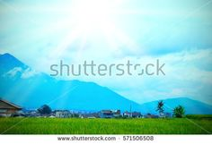 Sun Rising Over The Mountain And Green Terraced Rice Field in Garut , West Java , Indonesia