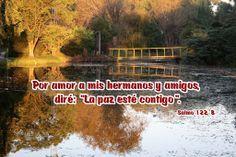 """Por amor a mis hermanos y amigos, diré: """"La paz esté contigo"""". (Salmo 122, 8)"""