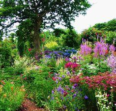Poppy Cottage Garden ... ideas for corner butterfly garden with picket fence
