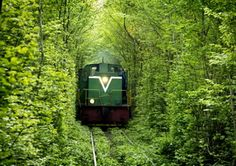 Tunnel of Love Ukraina  awesome