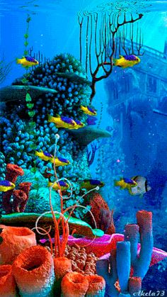 Under the sea Underwater Wallpaper, Underwater Painting, Ocean Underwater, Ocean Wallpaper, Underwater Animals, Mobile Wallpaper, Colorful Fish, Tropical Fish, Best Nature Wallpapers