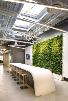 living wall / green wall and stand-up meeting point from Dorel Sports Offices – Norwalk