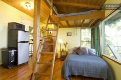 interior-treehouse-hawaii, what loft might look like in a clerestory roof design