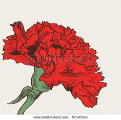 red carnation: Vector illustration wit red carnation drawing The post red carnation: Vector illustration wit red carnation drawing & appeared first on Blue Dream Pins. Carnation Drawing, Carnation Flower Tattoo, Red Carnation, Cool Tattoos, Tatoos, Awesome Tattoos, Drawing Borders, Drawing Reference Poses, Flower Canvas