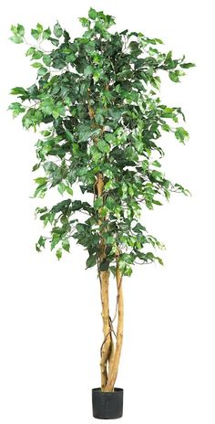 Weeping Fig Ficus Artificial Tree with Planter | 6 feet