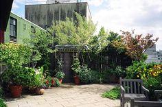 rooftop garden wedding spot :)