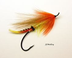 Orange Blossom (v) Steelhead Flies, Salmon Flies, Fly Tying Patterns, Salmon Fishing, Orange Blossom, Fly Fishing, Salmon, Fly Tying, Camping Tips