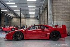 Ferrari F40 LM - Modena Trackdays 2015--- FREE analyze - http://goo.gl/wWGvc1